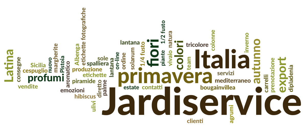 jardiservice-word-cloud-it